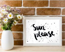 Sun Please