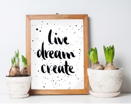 Live Dream Create